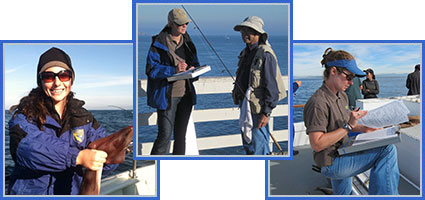 California Recreational Fisheries Survey