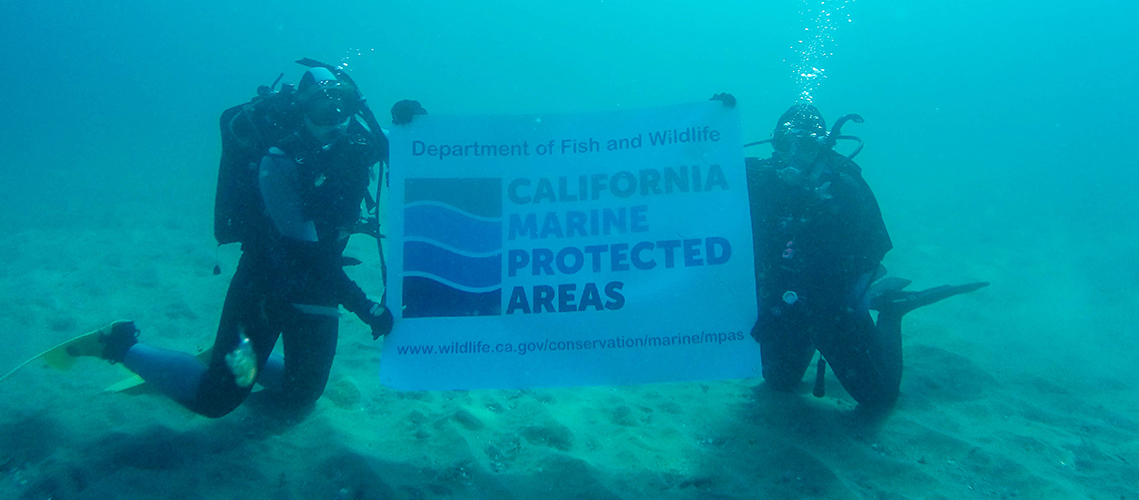 Divers holding MPA banner underwater
