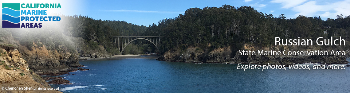 arched bridge over river mouth