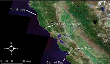 Sampling locations where kelp greenling were collected from December 2007 to February 2009