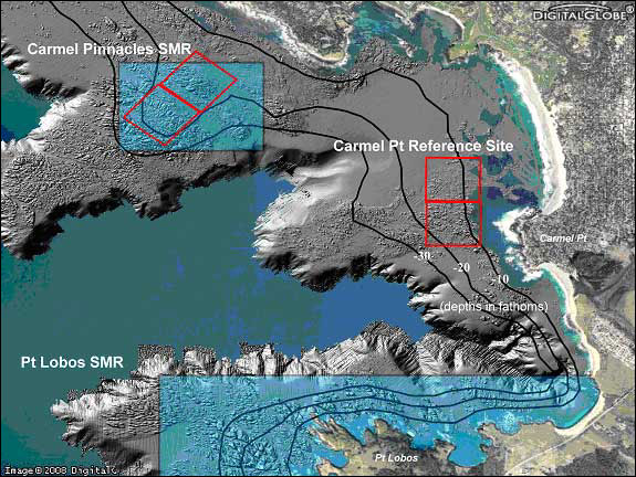 Sampling areas (red boxes) and bottom topography at Carmel Pinnacles State Marine Reserve and Carmel Point.  Rough areas represent higher relief and rocky habitat.