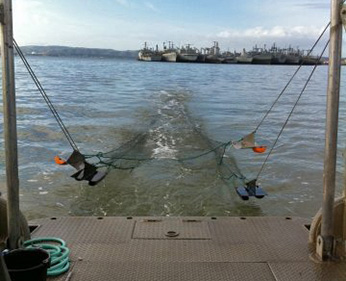 view of trawling net from back of boat