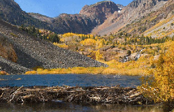 Lundy Canyon in Fall