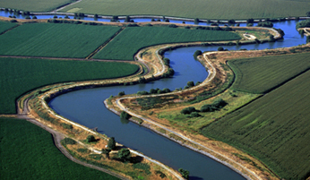 Meandering River in the Delta