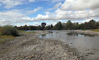 Mill Creek by the Sacramento River confluence
