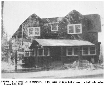 Burney Creek Hatchery - 1936