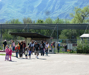 Adults and children's walking into the Fillmore Hatchery
