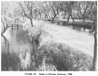 Fillmore Hatchery pond - 1956