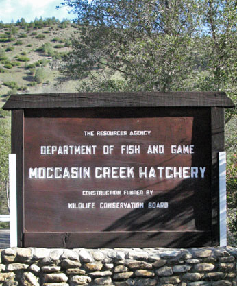 Moccasin Creek Hatchery Sign