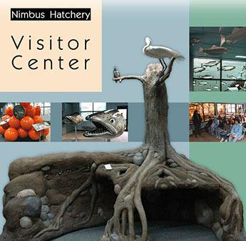 Nimbus Hatchery Visitor Center photos
