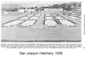 Black and white photo of San Joaquin Hatchery in 1956
