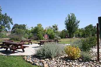 Picnic grounds on site at native vegetation gardens!