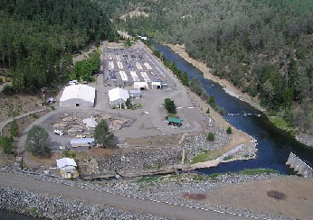 Trinity river hatchery for California fish hatcheries