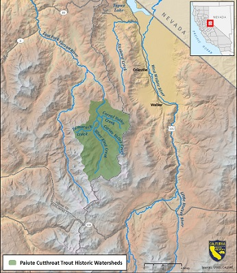 Map of Paiute cutthroat trout historic watersheds - click to enlarge in new window