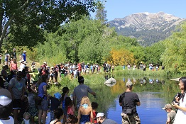 large group of families is gathered around a mountain pond fishing for trout