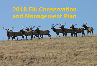2018 Elk Conservation and Management Plan - link opens PDF in new window