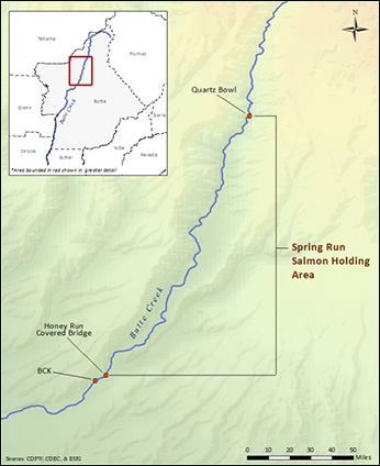 Map of Butte Creek. Snorkel surveys - click to enlarge in new window