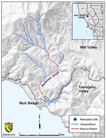 Map showing Redwood Creek, Marin County and 2014 rescue sites - click to enlarge