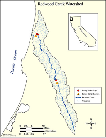 Figure 2. Map of Redwood Creek Watershed with symbols representing smolt traps and sonar stations. Click to enlarge in new window.