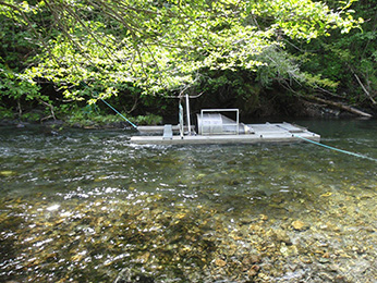 "Rotary screw trap capturing out-migrating juvenile salmon ""smolts"" in the middle-upper reach of Redwood Creek"