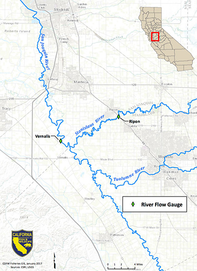 Map depicting locations of river flow gauges used to monitor dissolved oxygen in the San Joaquin and Stanislaus rivers - link opens in new window.