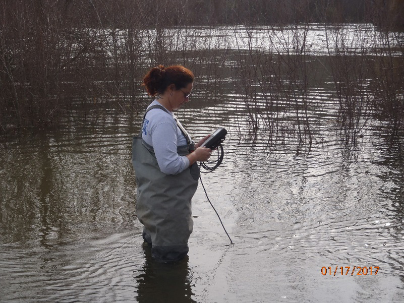 a CDFW scientist standing in the Tuolumne River and measuring dissolved oxygen