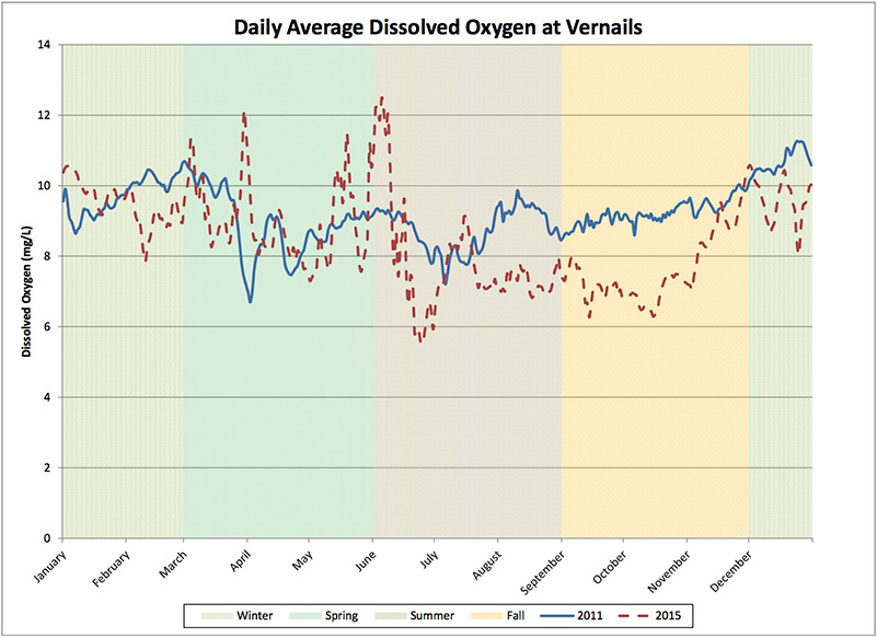 Graph comparing dissolved oxygen levels of 2015, a drought year, and 2011, a non-drought year, at the Vernails monitoring station on the San Joaquin River. Dissolved oxygen levels were generally lower and showed larger fluctuations during the drought year.