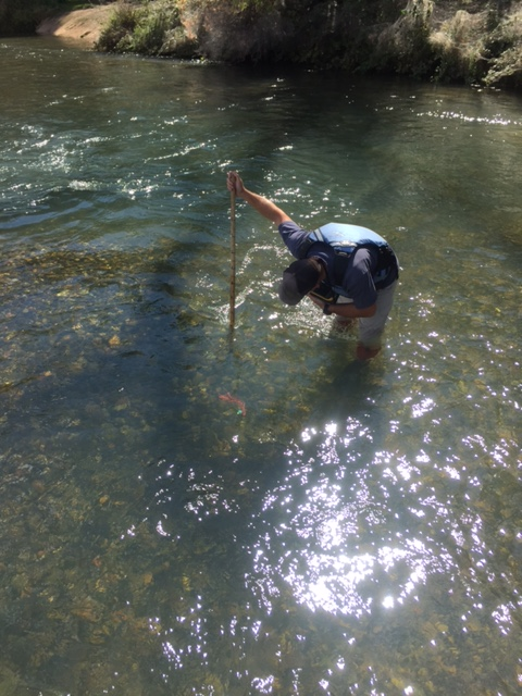 biologist from the Pacific State Marine Fisheries Commission measuring the water depth at the site of a winter-run redd towards the center of the Upper Sacramento River