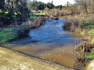Silvas' Crossing, Uvas Creek on December 16, 2014