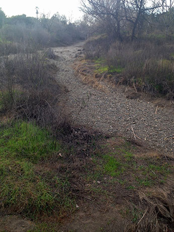 Silvas' Crossing, Uvas Creek on January 12, 2015