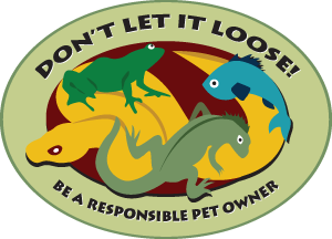 Don't Let it Loose campaign logo