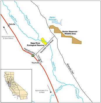 Napa river ecological reserve for Napa river fishing