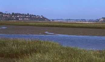 view of estuary at Upper Newport Bay ER