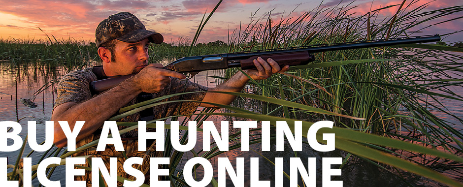 Buy a Hunting License online