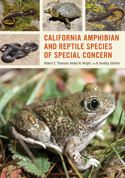 Amphibian and Reptile Species of Special Concern book cover