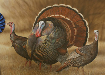 2011 upland game bird stamp art