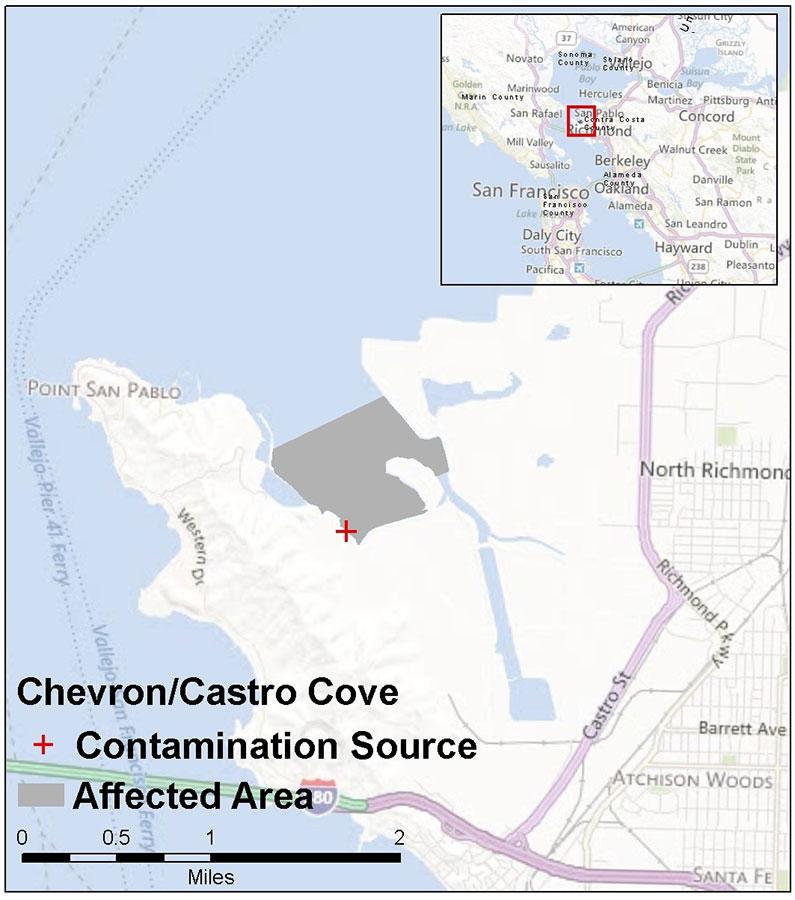 Chevron Castro Cove