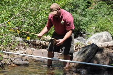 Scientist taking samples in a stream.