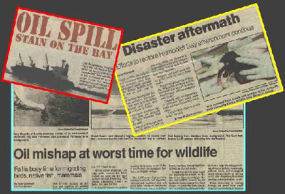 Collage of newspaper articles relating to the Kure Spill.