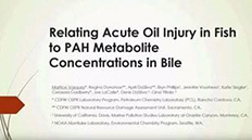 Relating Acute Oil Injury in fish to PAH Metabolite Concentrations In Bile (Video) - link opens in new window