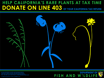 Help California's Rare Plants at Tax Time Donate on Line 403 of your California Tax Return.
