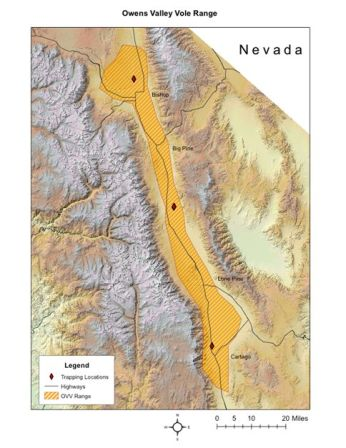 Range Map Owens Valley vole