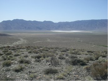 Overview of Deep Springs Valley - black toad habitat