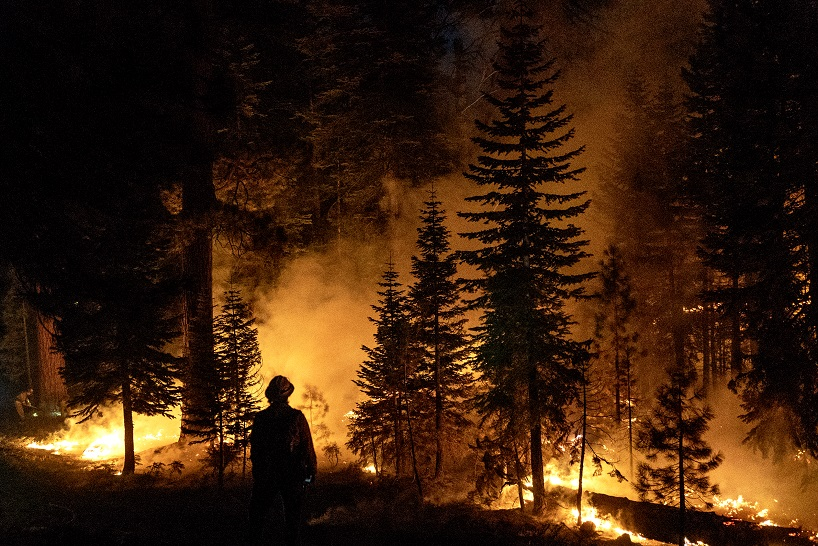 firefighter standing in front of a forest on fire at night