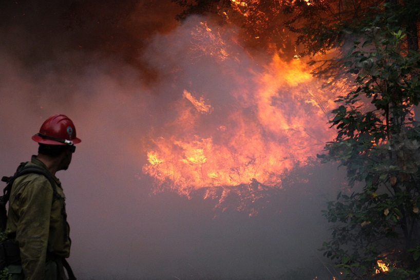 firefighter looking back toward a hillside engulfed in flames