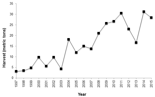 Graph 3 - Commercial edible algae harvest logbook data, 1997-2015