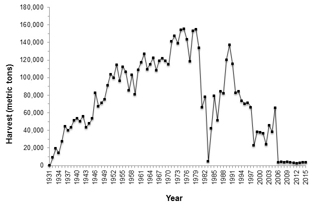 Graph 2 - Commercial kelp harvest logbook data for giant and bull kelp, 1931-2015