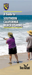 California Beach Fishing
