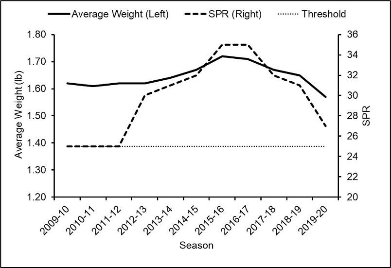 A graph of yearly lobster average weight in pounds overlayed with the SPR from 2009 to 2020. The SPR threshold of 25 is also indicated with a horizontal line, and the SPR value for the most recent season is above this threshold.