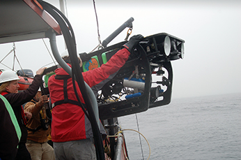 ROV Beagle is retrieved after completing a survey. CDFW/MARE photo